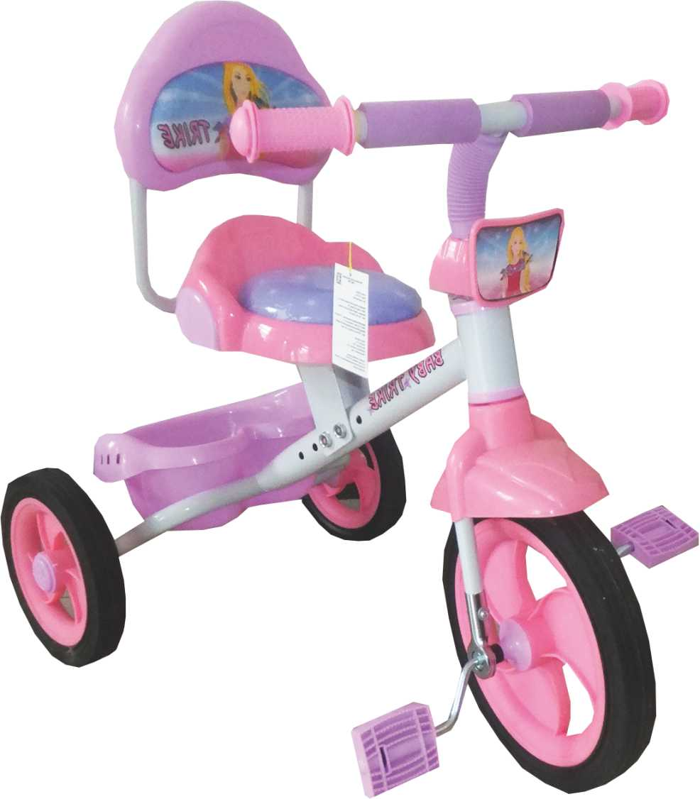 Велосипеды трехколесные Baby trike WS909