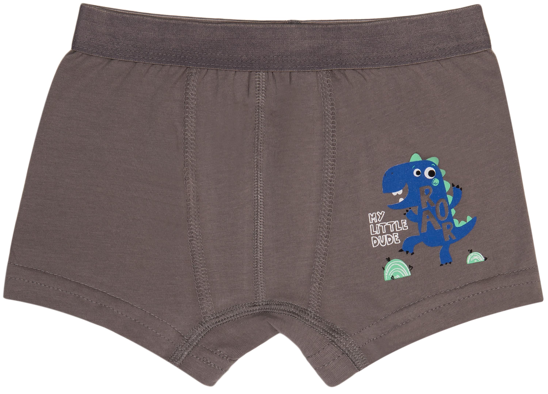 Купить Нижнее белье, Трусы для мальчика Anisse 2 шт., темно- серые с рисунком динозавры, Турция, темно- серый с рисунком динозавры, Мужской