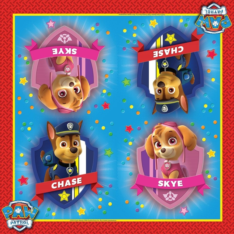 Paw Patrol Paw Patrol Paw Patrol cute long sleeve paw patrol t shirt pants pajamas for boys