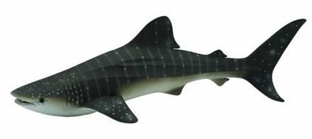 Фигурка Collecta «Китовая акула XL» игровые фигурки gulliver collecta динозавр трицератопс 1 40