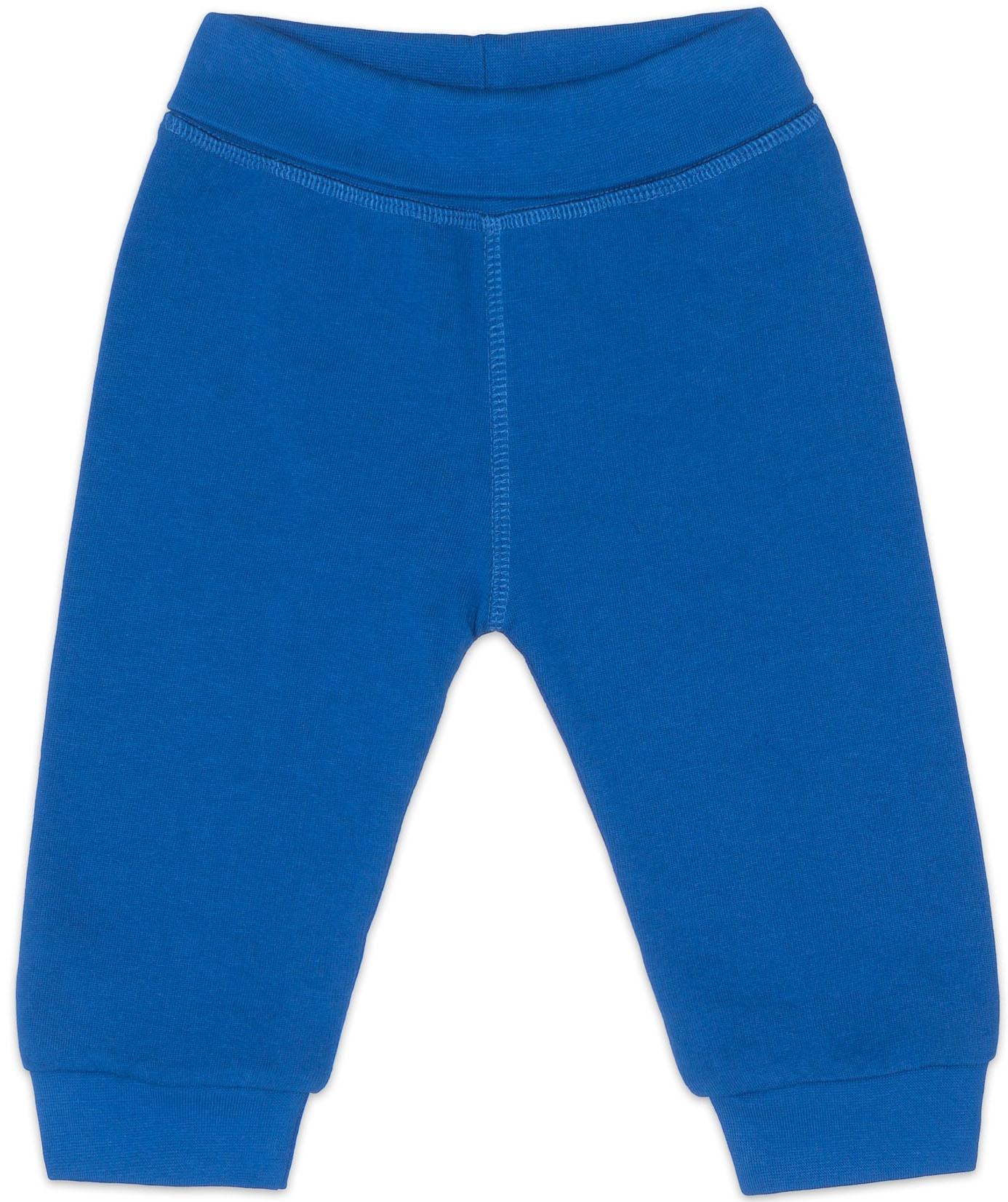 Брюки Barkito Брюки трикотажные для мальчика Barkito, Динозаврики, синие брюки barkito брюки трикотажные для мальчика barkito супер baby серые с рисунком