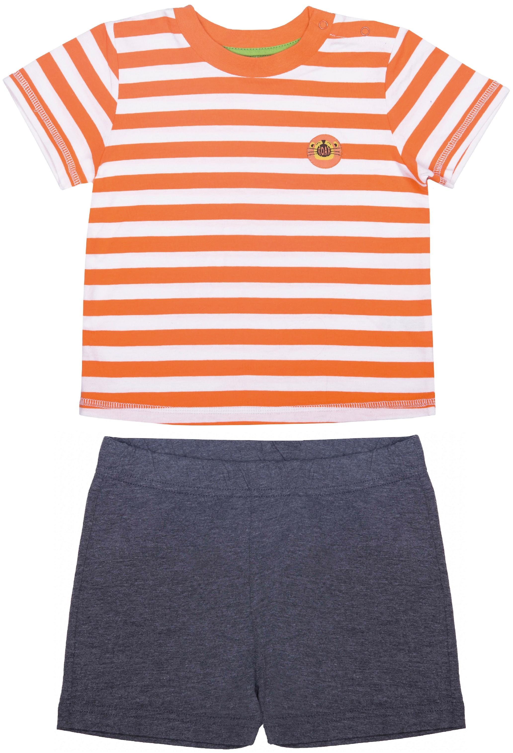 Купить Комплект (футболка и шорты) для мальчика, Джунгли 2, 1шт., Barkito S17B2009J(1), Узбекистан, футболка: белый в оранжевую полоску, шорты: серый, Мужской