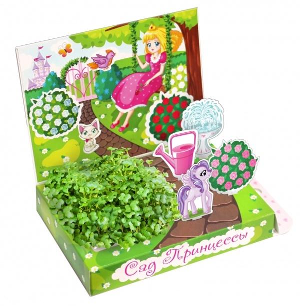 Развивающий набор Happy Plant Замок принцессы. Сад принцессы. Лесная фея