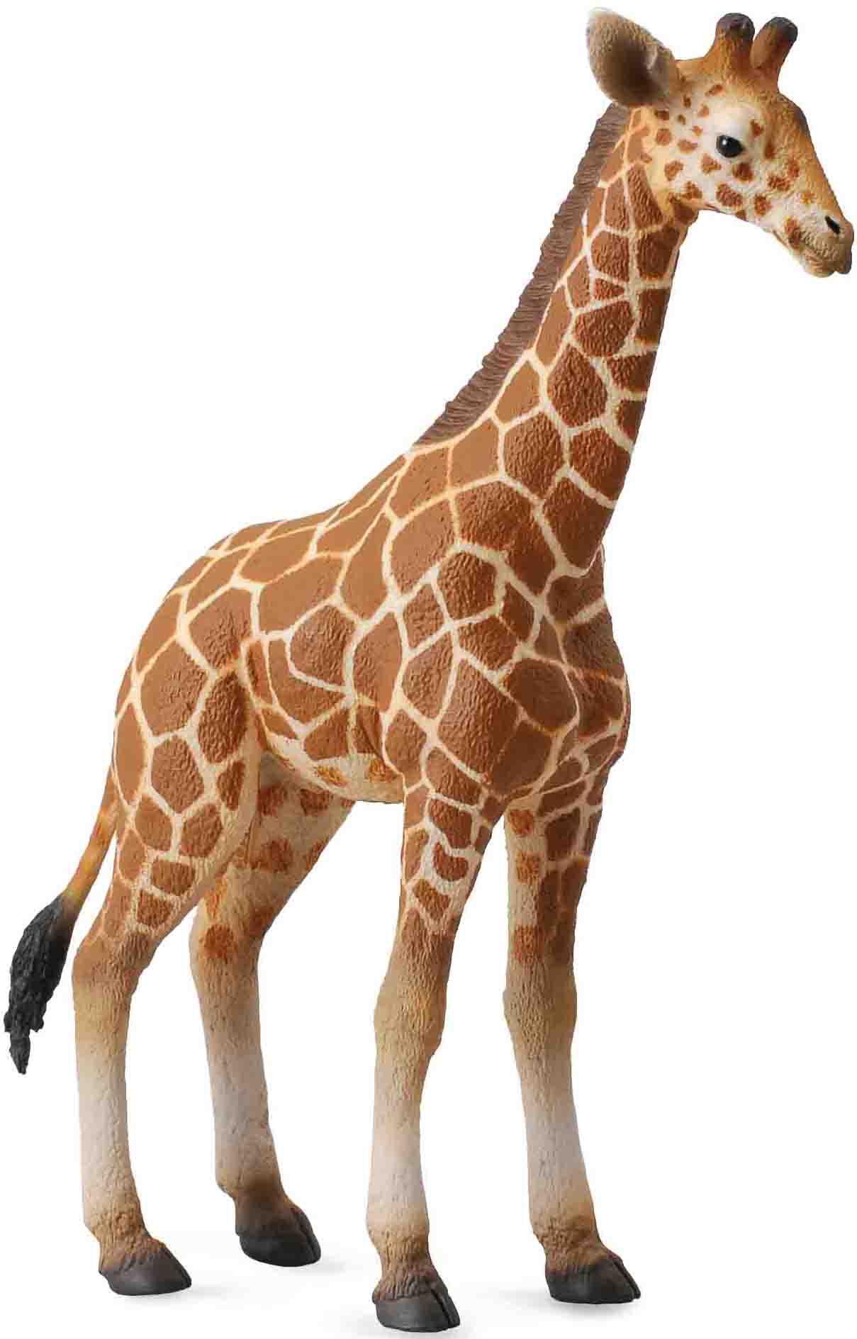 Фигурки Гулливер Детеныш сетчатого жирафа игровые фигурки papo игровая реалистичная фигурка космический воин