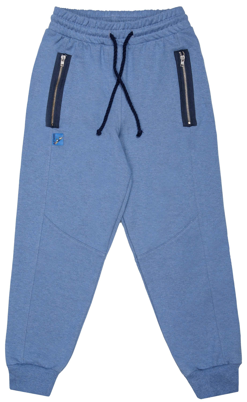 Купить Брюки трикотажные для мальчика Barkito Сноубординг , синие, Узбекистан, синий, Мужской
