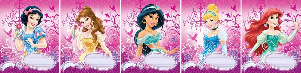 Тетради, дневники Princess Princess Disney тетрадь росмэн disney самолеты линия 12 листов 29024