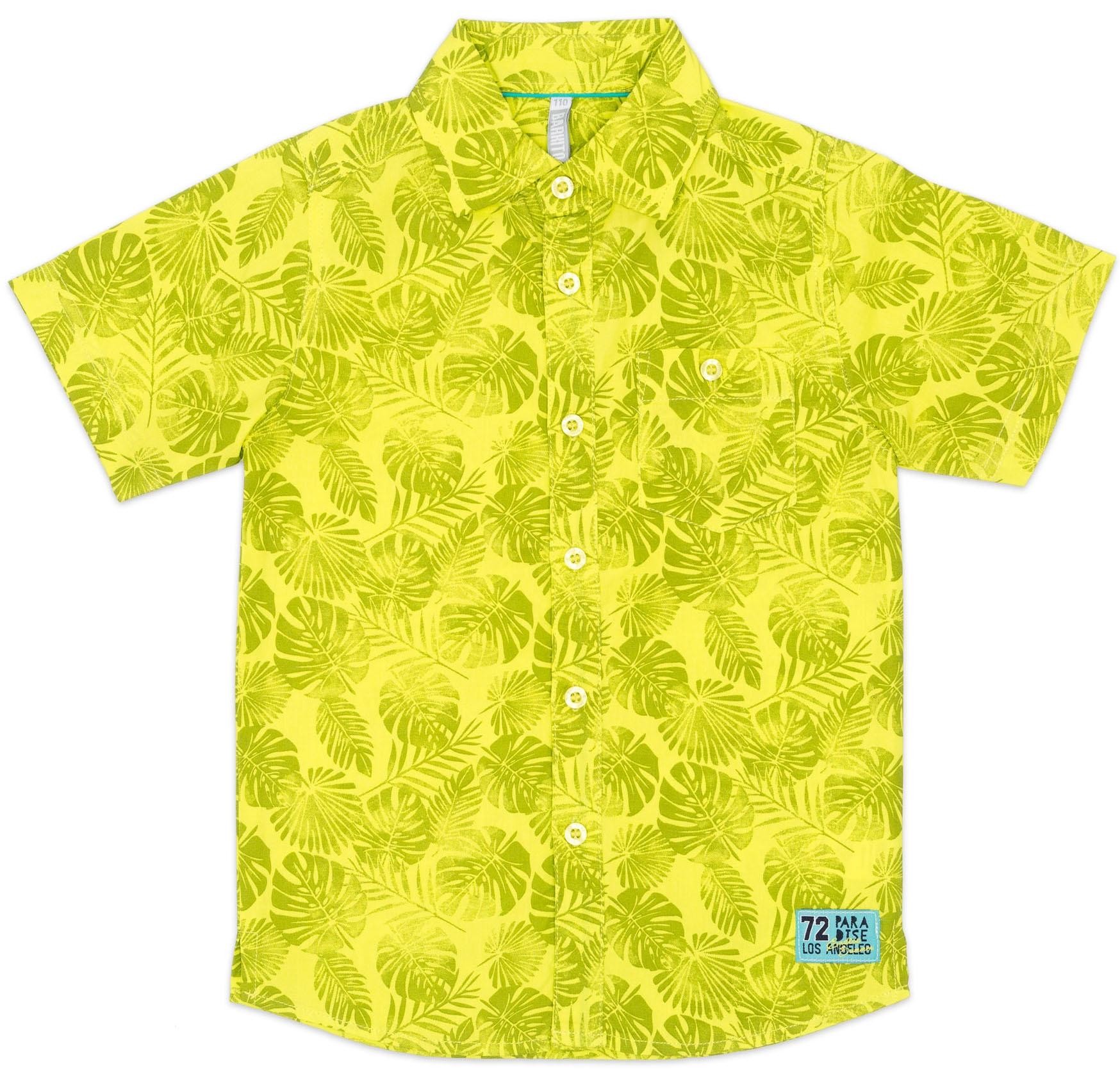 Рубашки Barkito Лови волну салатовая с рисунком брюки barkito салатовая