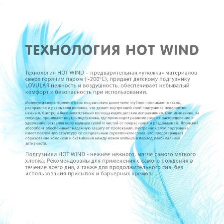 Фото - Подгузники 80 шт. Lovular Hot Wind S (0-6 кг) подгузники lovular hot wind xl 12 20 кг 38 шт