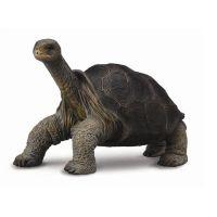Фигурки животных Collecta Фигурка Collecta «Абингдонская слоновая черепаха» 7 см статуэтки и фигурки ганг статуэтка черепаха 6х10 см