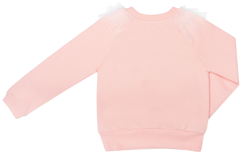 Купить Толстовки, Джемпер модель толстовка для девочки Barkito Балерина , розовый, Узбекистан, Женский