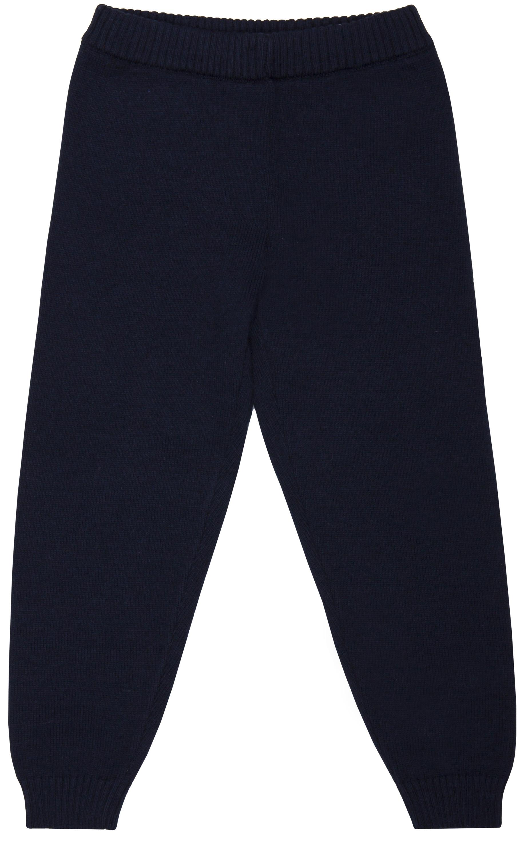 Брюки для мальчика Barkito Арктический патруль 2 брюки barkito брюки трикотажные для мальчика barkito динозаврики синие