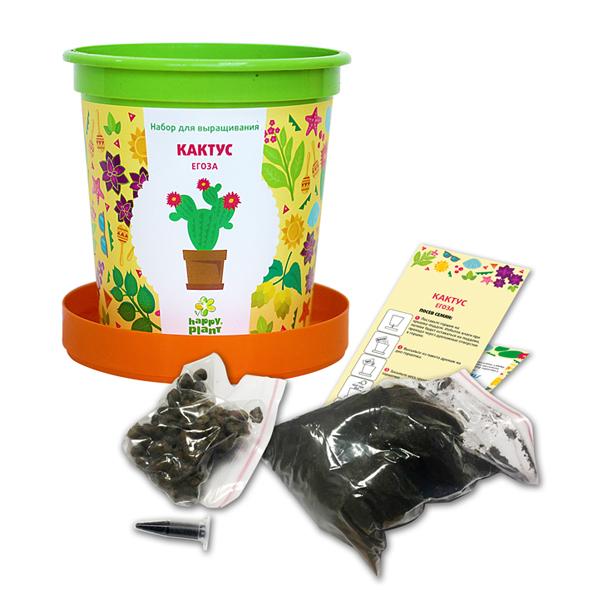 Развивающий набор Happy Plant Растения