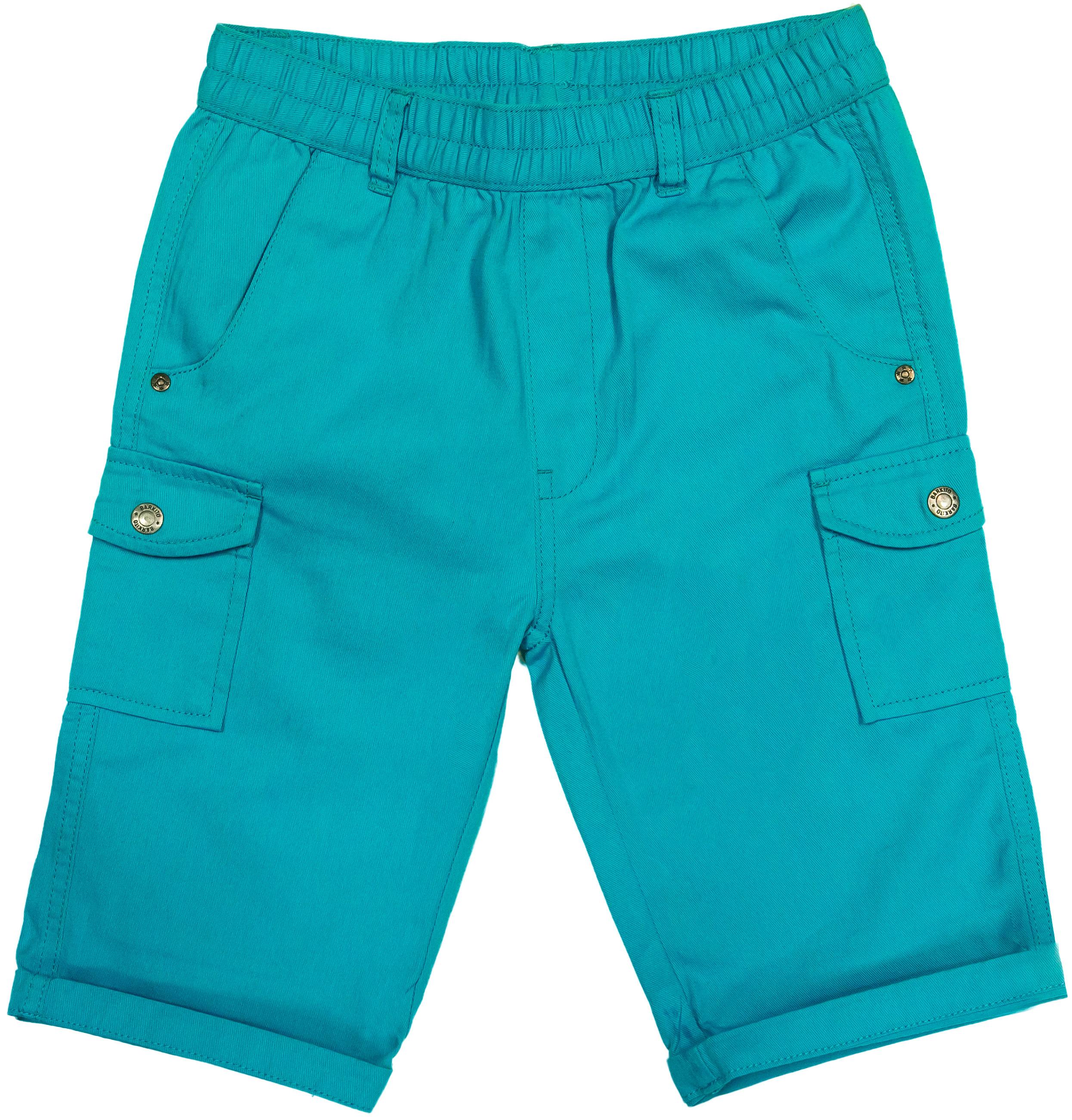 Шорты Barkito Шорты модель Бермуды для мальчика Barkito Тропическая жара, бирюзовые шорты бермуды gas шорты бермуды
