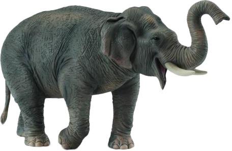 Фигурки животных Collecta Азиатский слон 15 см